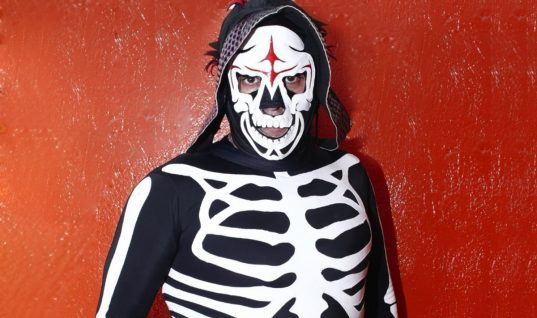 AAA's La Parka Seriously Injured After Suicide Dive Goes Wrong (w/Video)