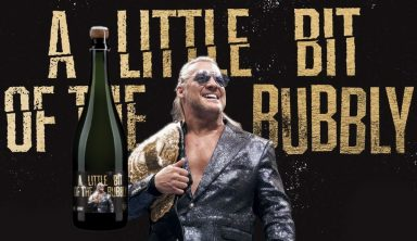 Chris Jericho & Stephen Amell Launch 'A Little Bit Of The Bubbly' Wine