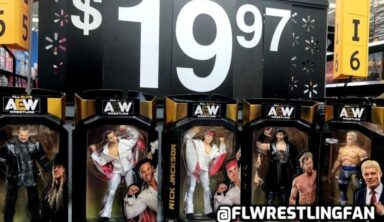 AEW's New Jazwares Figures Are Quickly Selling Out